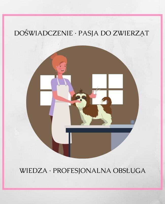 Grafika przedstawiająca kobietę podczas strzyżenia psa