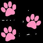 Różowe psie odciski łap